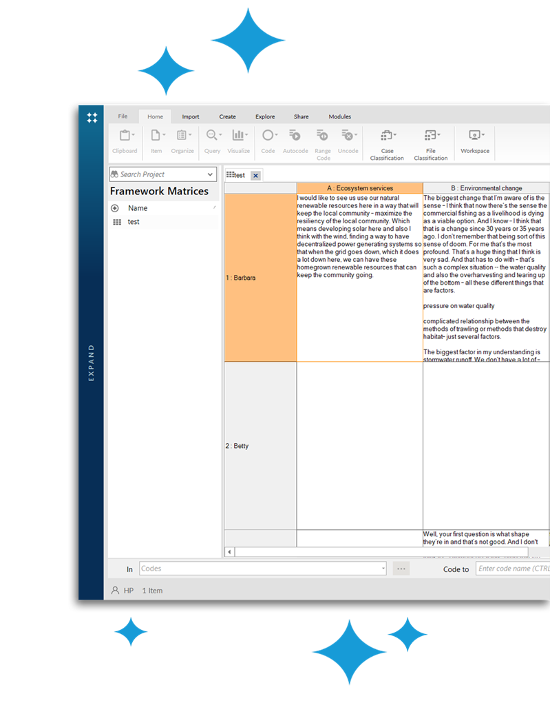 NVivo home comprehensive framework matrix